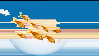 Сайт об аквариумах и рыбках