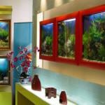 Плоские аквариумы