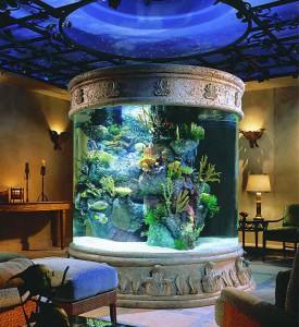 aquarium-600k