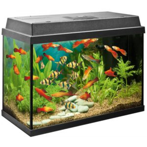 Сайдекс для аквариума