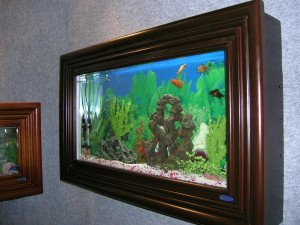 Aquariumn Frame1